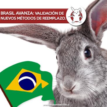 brasil nuevos metodos