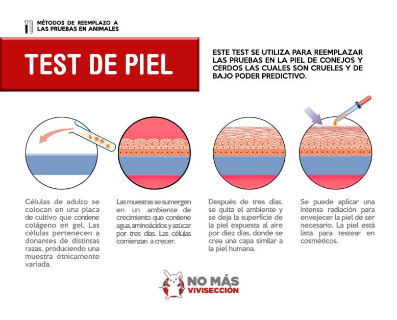 TEST DE PIEL